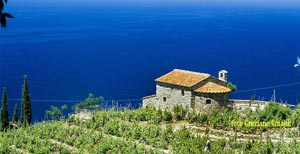 Picture of: First Time on Elba: 10 Things to Know