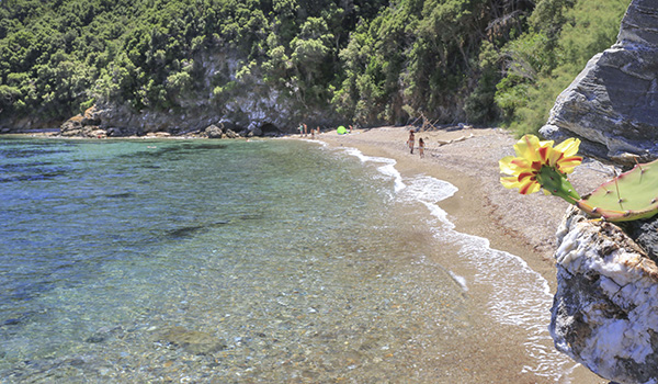 Elba Island, Italy, Summer, Holiday, Beach, Mediterranean Sea, crystalline water