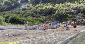 Picture of: A beach for young Robinson Crusoes