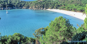Picture of: The beautiful beach of Fetovaia