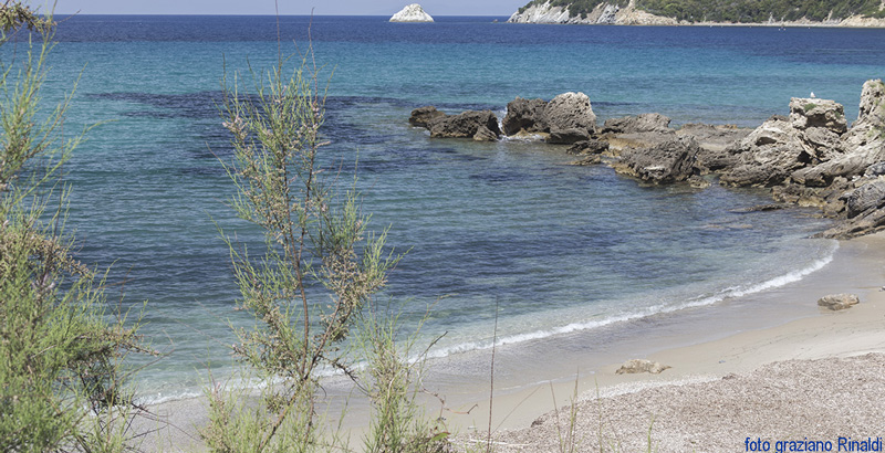 Elba Island, Viticcio beach