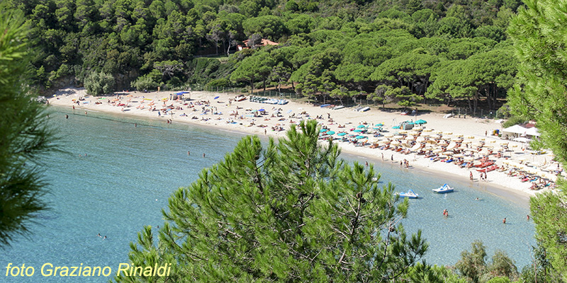 Elba Island, Italy, Mediterranean sea, Holidays, Summer, beach, family holiday