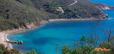 sea, beach, elba island, landscape